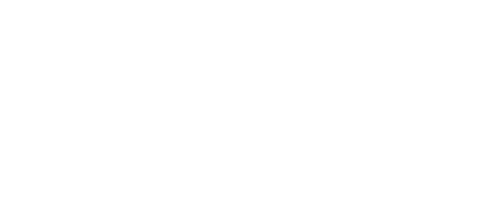 StepUp Horse